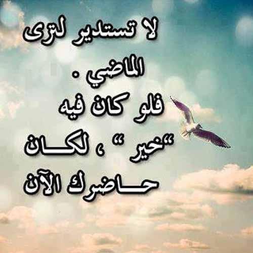 بالصور امثال وحكم عن الحياة , احلى حكم عن الدنيا 9163 1