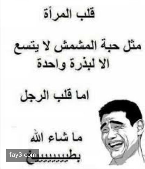 صورة اجمد نكت مصرية , اضحك على نكات المصريين