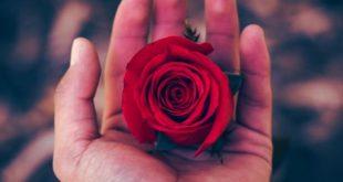بالصور رمزيات حب رومانسيه , رمزيات روعه رومانسية للحب 9439 10 310x165