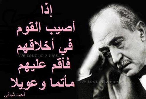 بالصور حكم احمد شوقي , حكم لامير الشعراء 9575 1