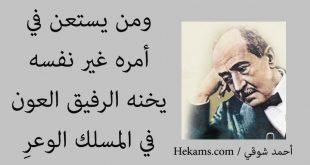 صورة حكم احمد شوقي , حكم لامير الشعراء