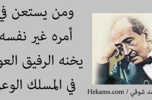 صوره حكم احمد شوقي , حكم لامير الشعراء