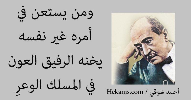 بالصور حكم احمد شوقي , حكم لامير الشعراء 9575