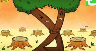 صوره اضرار قطع الاشجار , مخاطر وعقوبات على جريمة قطع الاشجار