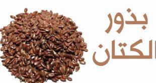 بالصور فوائد بذرة الكتان , اسرار وفوائد وكيفية استخدام بذور الكتان 4647 2 310x165