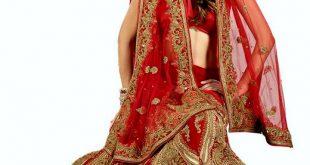 صورة موديلات فساتين هنديه , اروع تشكيلة من الفساتين الهندي