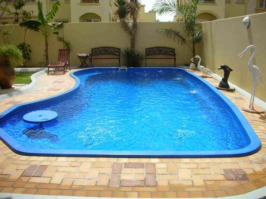 بالصور حمامات سباحة جديدة , احدث انواع حمامات السباحة 9108 5