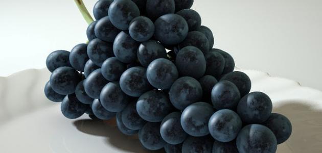 صورة فوائد العنب الاسود , اهمية تناول العنب الاسود