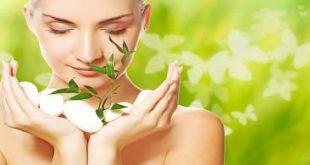 صوره علاج دهون الوجه , الاعشاب المناسبة للتخلص من دهون البشرة