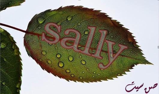 بالصور صور اسم سالي , اجمل صورة لاسم سالي 9102 7