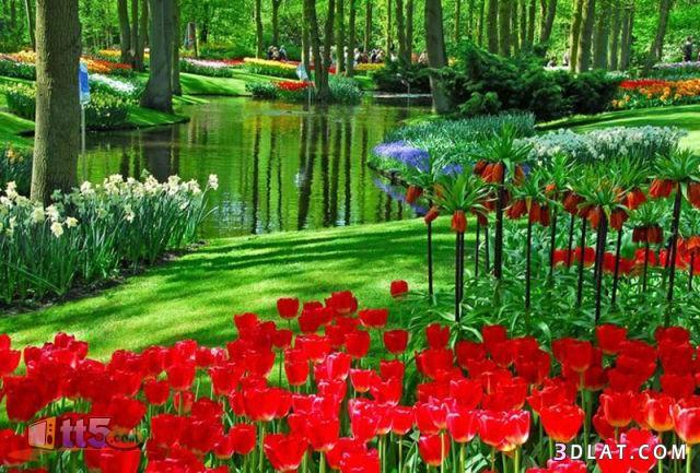 بالصور صور طبيعة جميلة , اروع صور من الطبيعه 9287 4