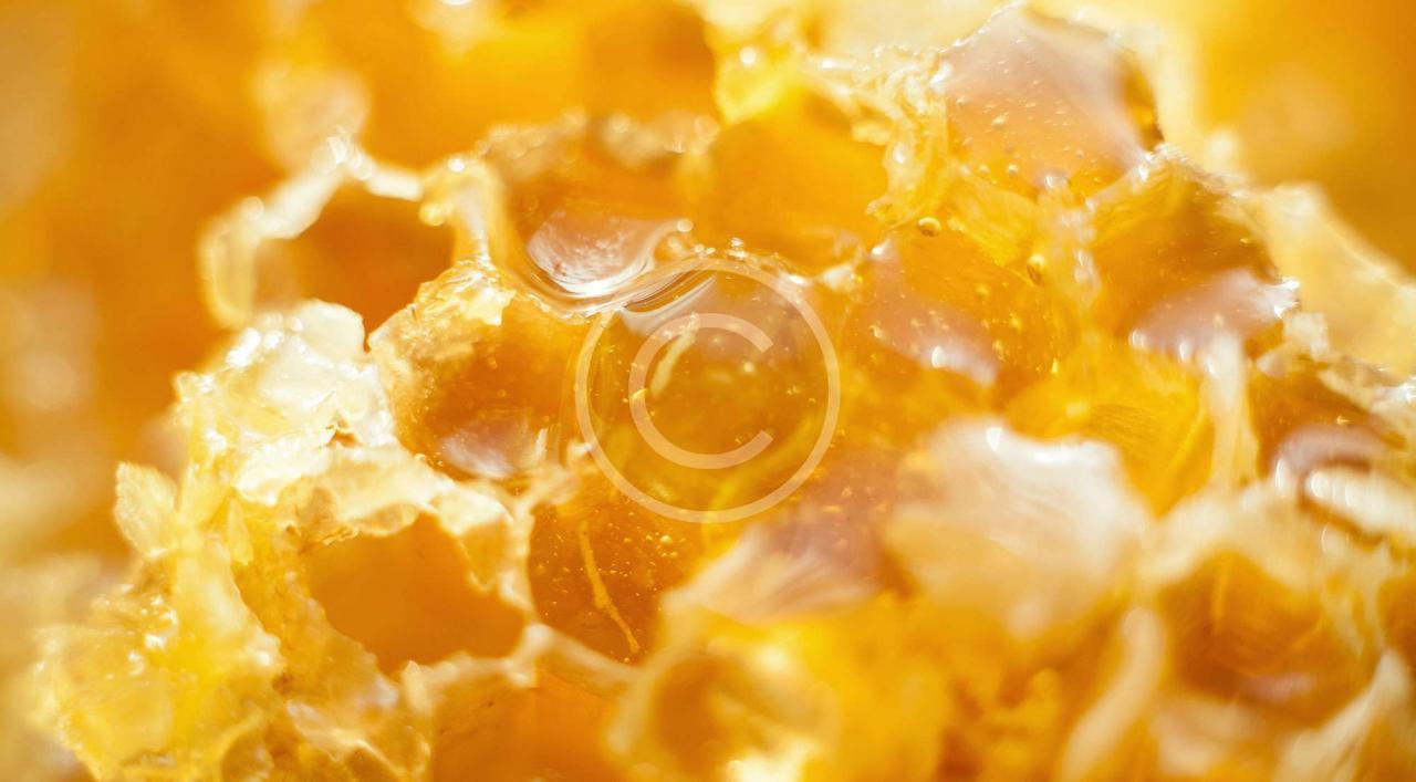 صورة غذاء ملكة النحل, علاج طبيعي للامراض الكلي والكبد