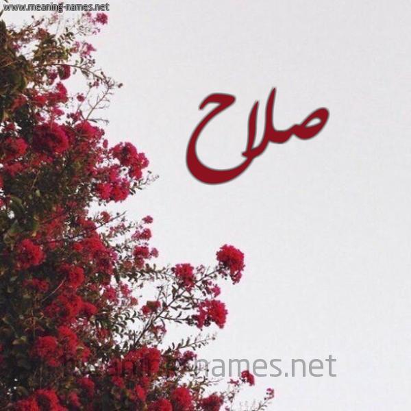صورة صور اسم صلاح, صور مكتوب عليها اسم صلاح