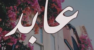 معنى اسم عابد، ماهو المعنى لاسم عابد