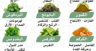 فوائد الاعشاب الطبيعية, للطب البديل فوائد عظيمة