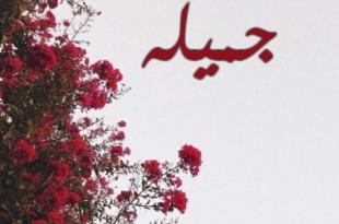صورة سمي بنتك اسم شائع , معنى اسم جميله
