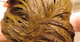 صورة فوائد الحناء للشعر , تأثير الحناء على الشعر