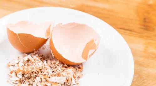 صورة تأثير قشر البيض على الصحة , فوائد قشر البيض