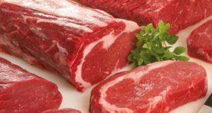 فوائد لحم الجمل , يعتبر لحمه مفيد للانسان