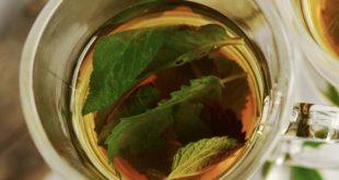 صورة فوائد شاي النعناع , تناول شاى النعناع ولاحظ الفرق