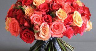 صورة اجمل باقة ورد، ورود جميلة جداباروع الصور