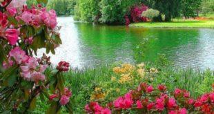 صورة خلفيات طبيعيه خلابه، اروع المناظر الطبيعة باجمل الخلفيات