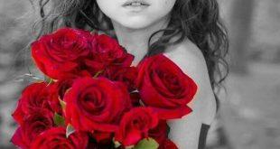 صورة رمزيات ورد جوري، بالصور اجمل انواع الورود ورد جورى