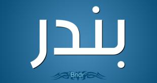معنى اسم بندر , اجمل الاسماء القديمه ومعناه في المعجم